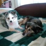 Таша и Патти